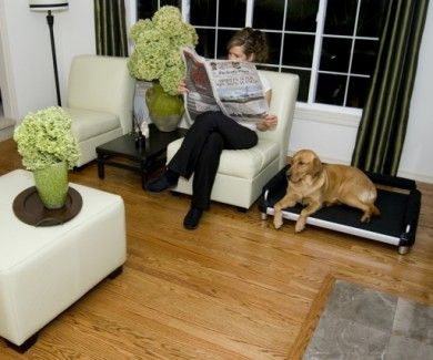 DoggySnooze dog bed matches with the living room interior ...