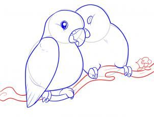 How To Draw Lovebirds Step 8 Love Birds Drawing Animal Sketches Easy Bird Drawings