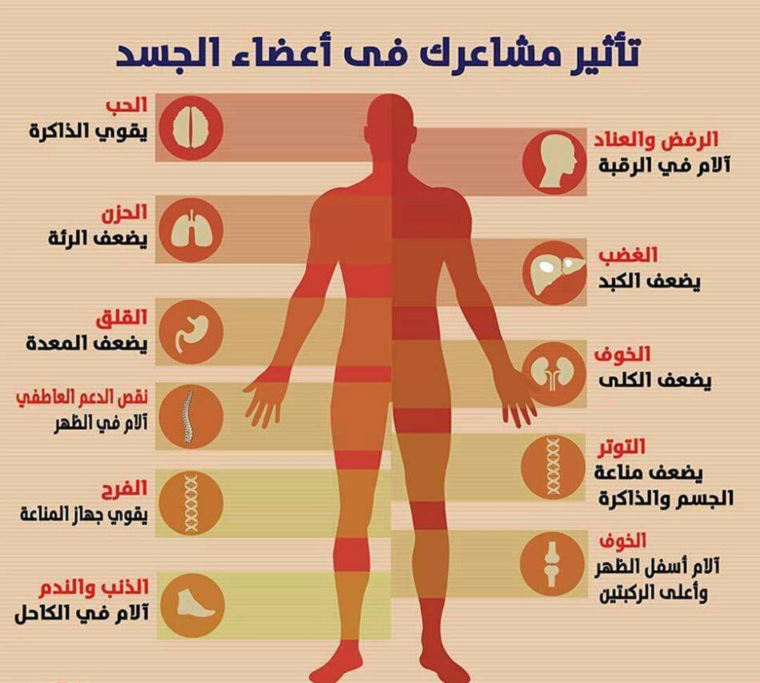 36 Likes 3 Comments Emraa Com Emraacom On Instagram تعرفي على أهم التأثيرات للمشاعر في أعضاء الجسم تأثير Medical Posters Book Qoutes Quality Quotes