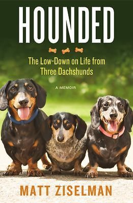 Hounded The Lowdown On Life From Three Dachshunds Ziselman Matt