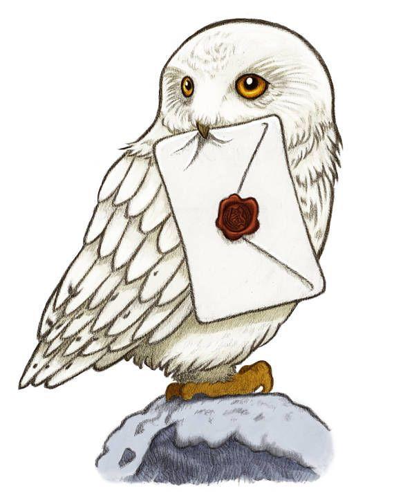 hedwig hibou dessin realiste - Google Search | Dessin ...