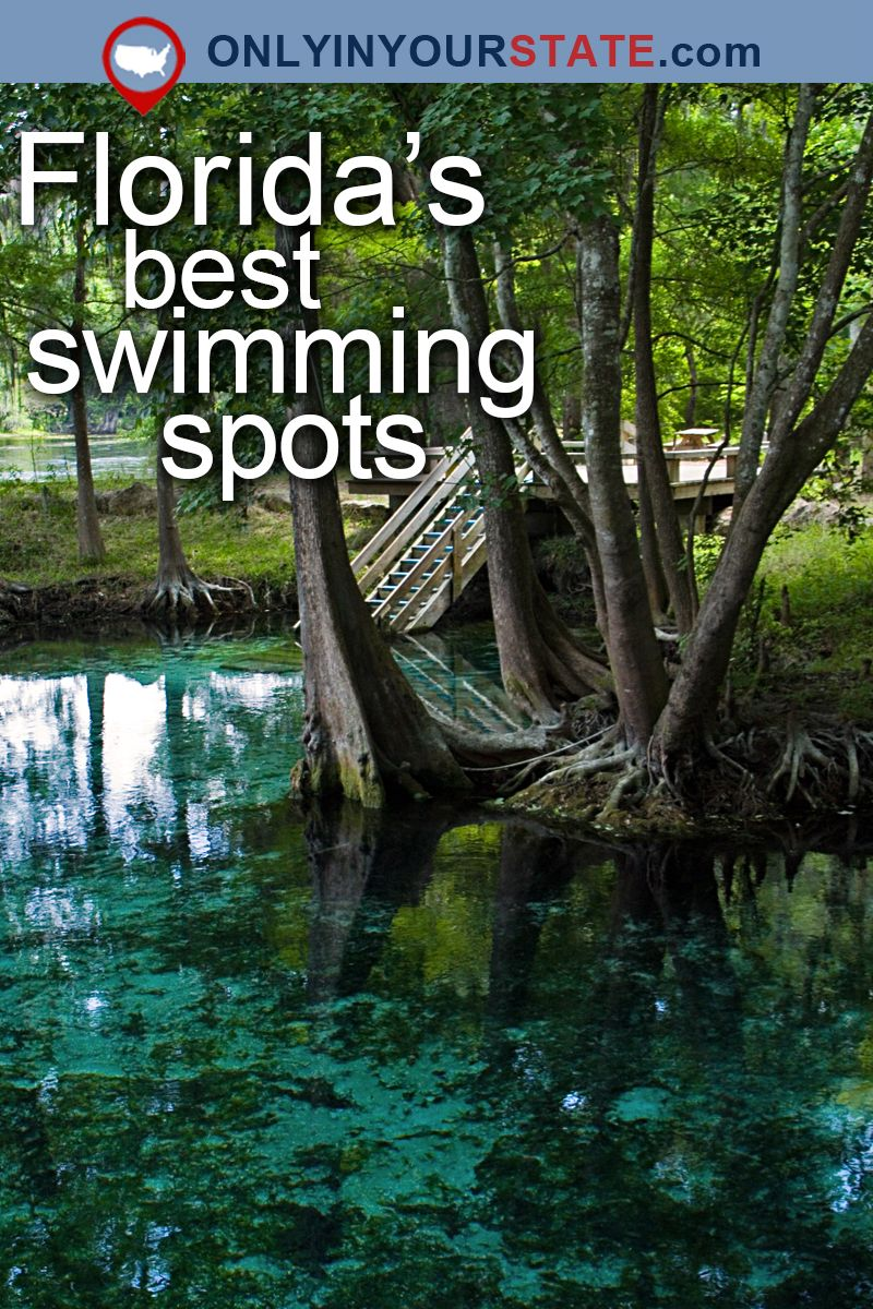 here are 10 more florida swimming holes that will make your summer rh pinterest com