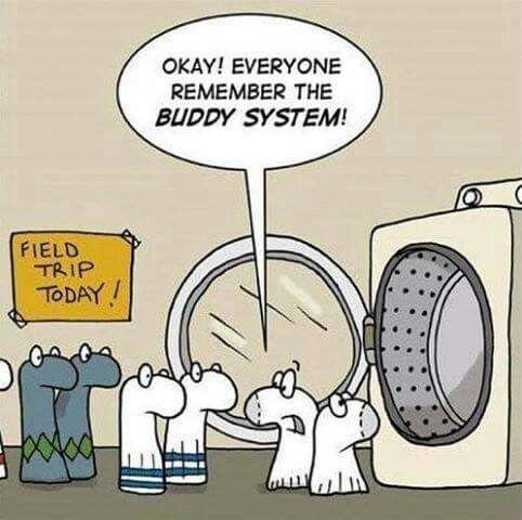 Socks...where so they go?