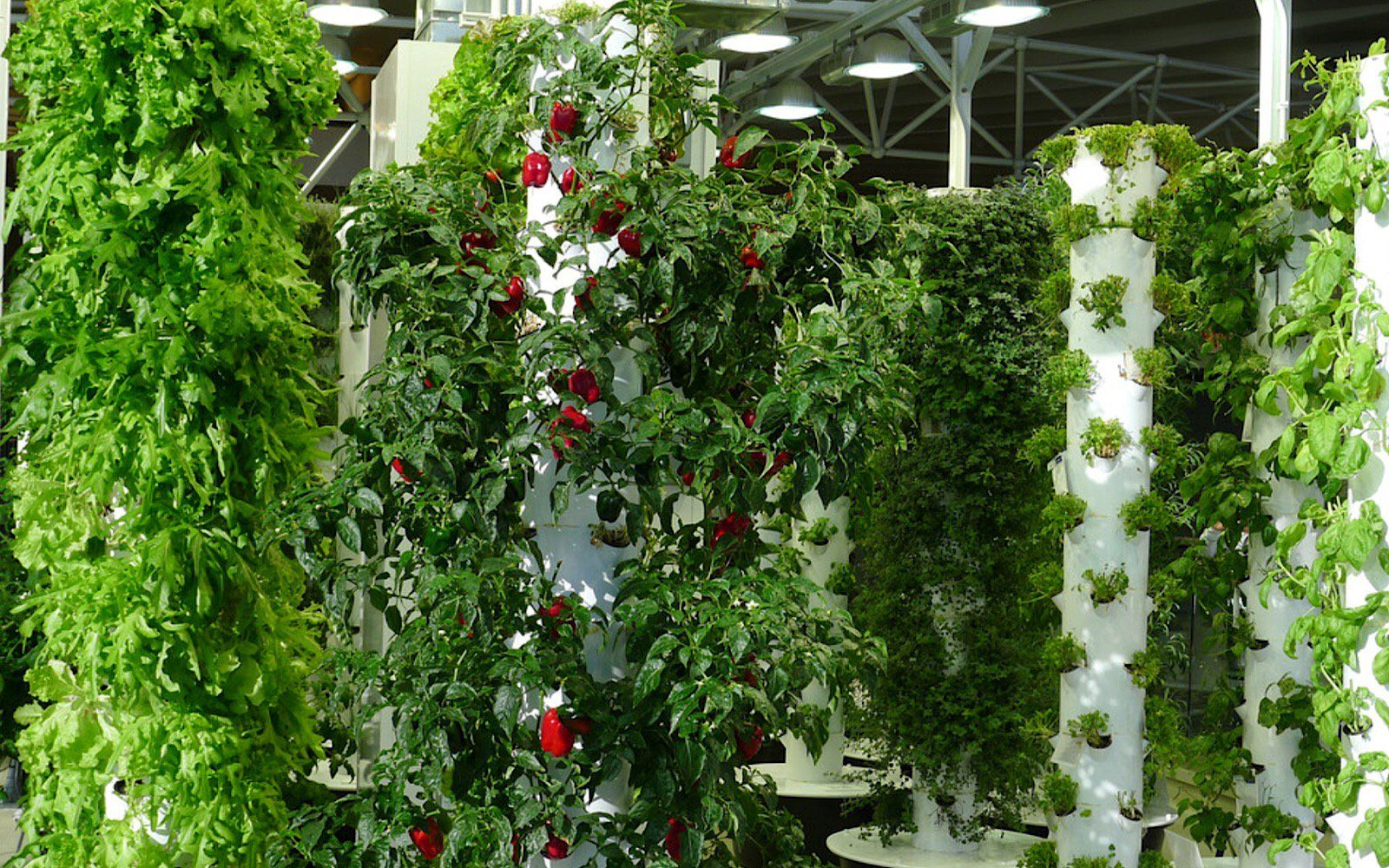 How to Make a Vertical Planting Tower Vertical garden
