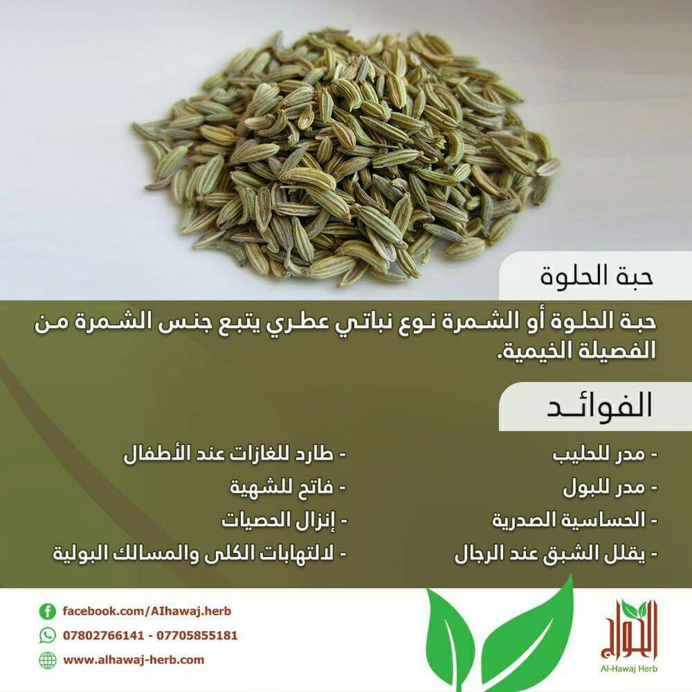 Pin By Jabbar Hasan On طب وصحه Medical Health How To Dry Basil Herbs Health