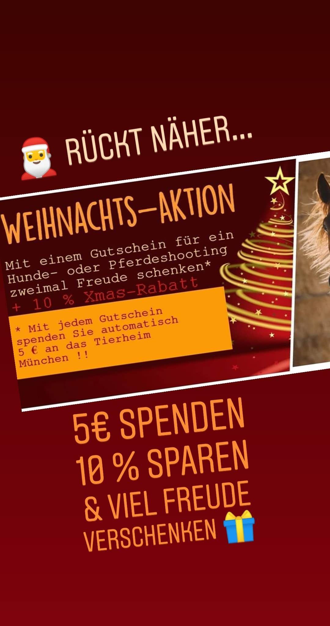 Mit Einem Weihnachts Gutschein Fur Ein Pferdeshooting Oder Hundeshooting Die Shootings Finden In Munchen Und Bayern Statt Mehr Verschenken Spenden Freude