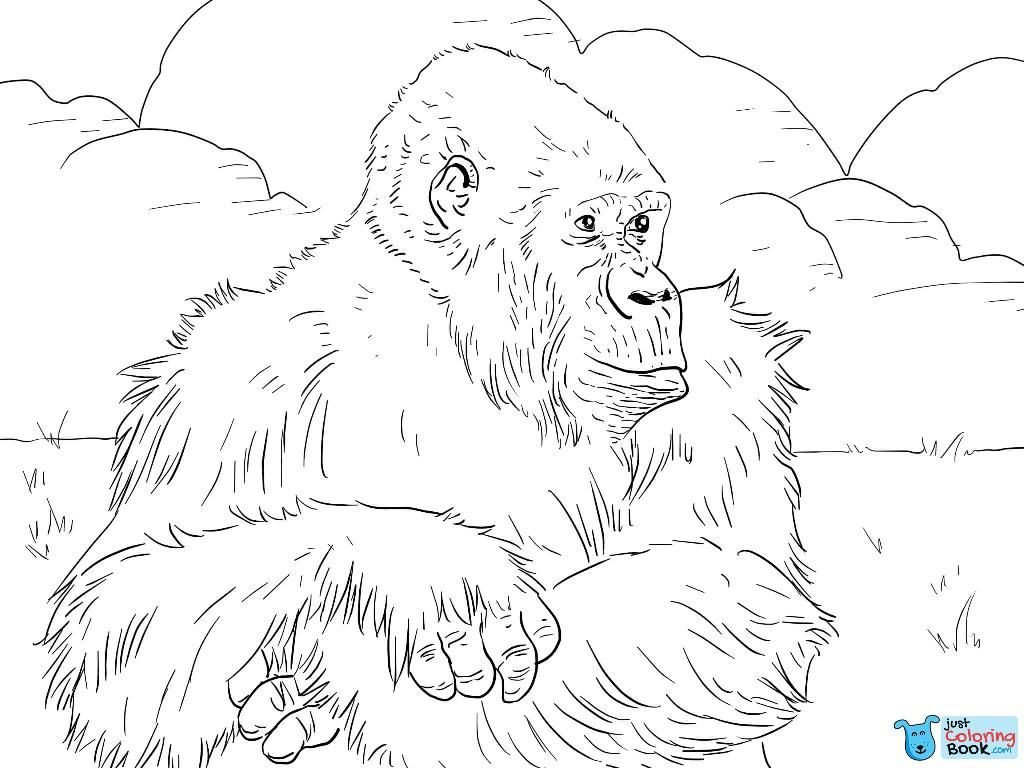 Mountain Gorilla Coloring Page Coloring Pages
