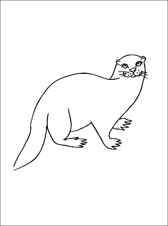 otter coloring page to print out  coloring pages