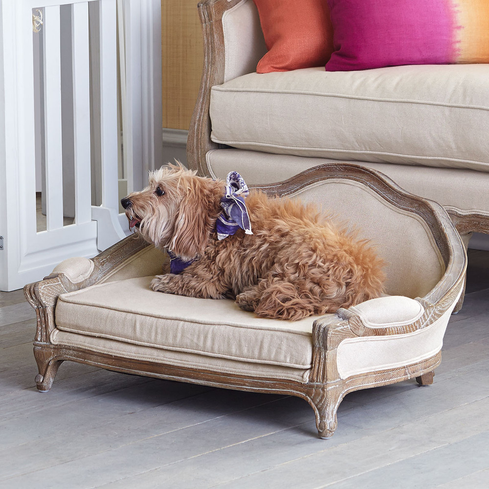 fancy dog beds furniture. Fido\u0027s Fancy Daybed Dog Beds Furniture Y