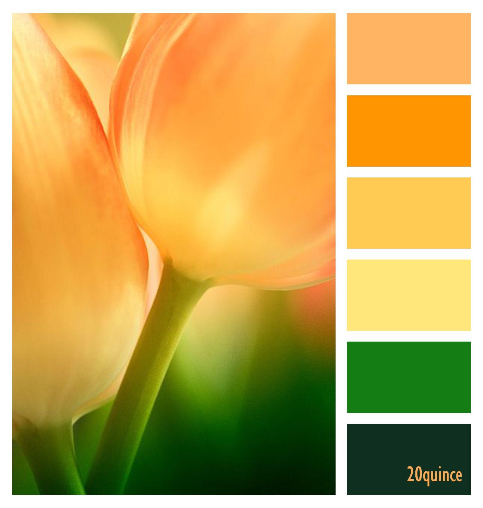Pin En Color Combinations