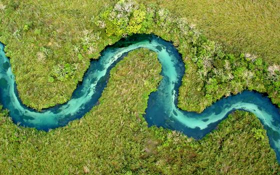 Banhado em Bonito (Foto: José Sabino, Projeto Peixe de Bonito.)