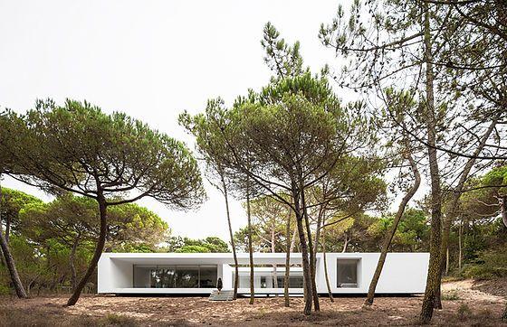 Frederico Valsassina Arquitectos, Casa em Sintra Colares Photography ©Fernando Guerra FG+SG