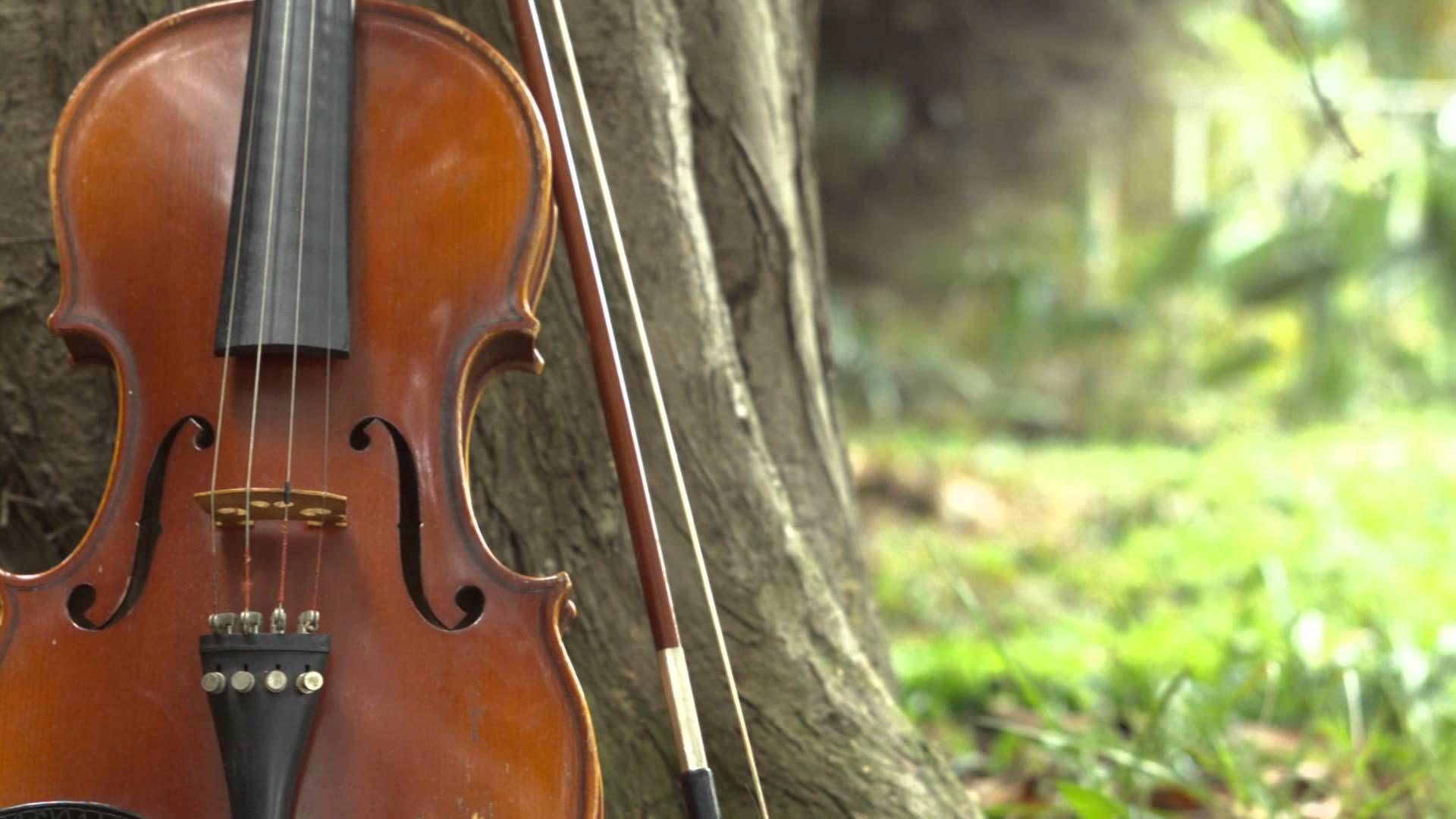Violines Vallenatos - Esa