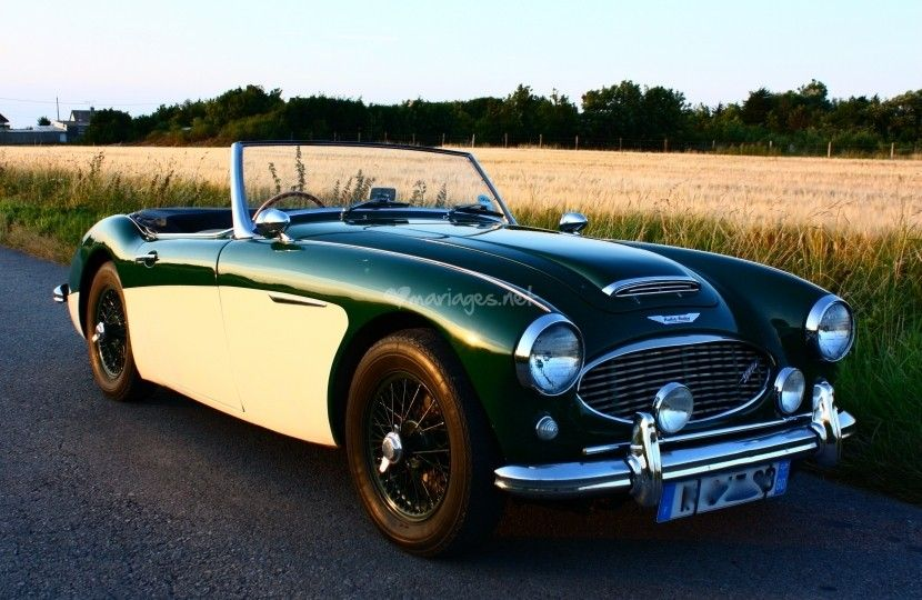 austin healey 3000 de tickford location voiture mariage photo 1 voiture wedding pinterest. Black Bedroom Furniture Sets. Home Design Ideas