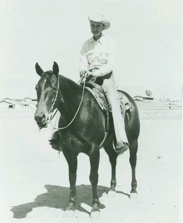 An amazing mare. Poco Lena