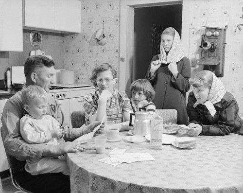 An overview of the typical american family in the 1950s