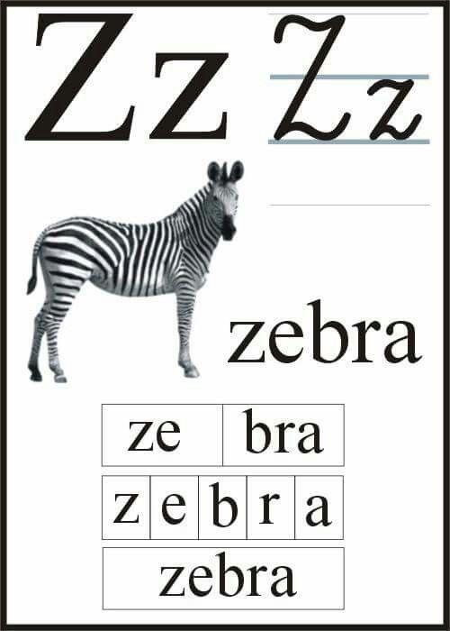 Pin by Danka on Alfabet litery   Alfabet polski, Nauczanie, Pisanie