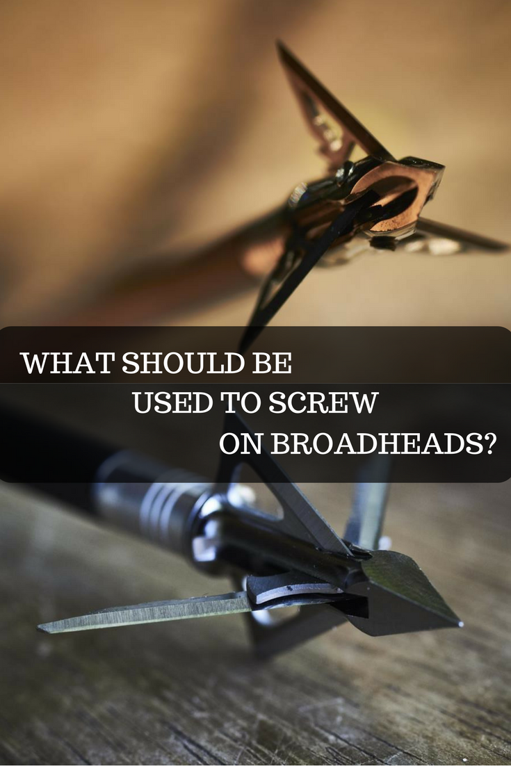 What should be used to screw on broadheads? Learn all about ...