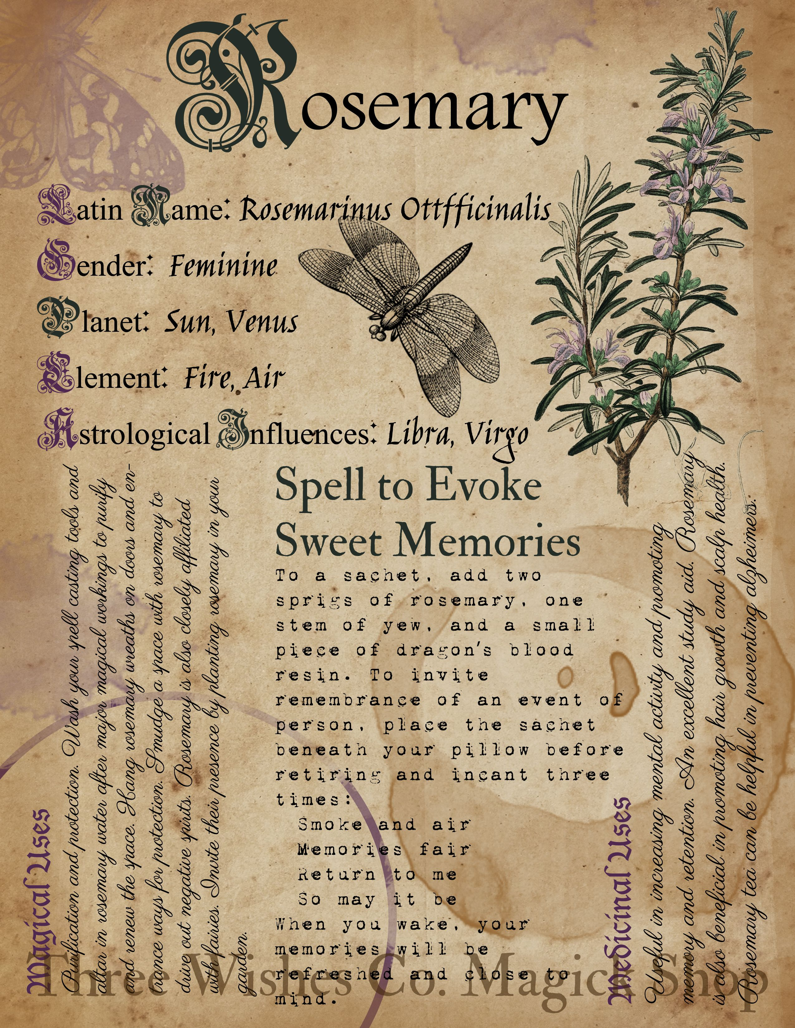 Rosemary. Book of Shadows Pages. Digital Grimoire.