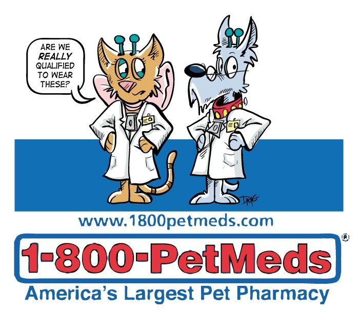 15 Off 49 Free Shipping Online Use 1 800 Pet Meds Coupon Code Save15 In Their Promo Box At Checkout April 15 Print Coupons Retail Coupons Pet Meds