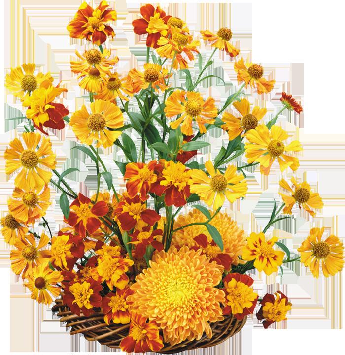 Flores naturales, natural flowers