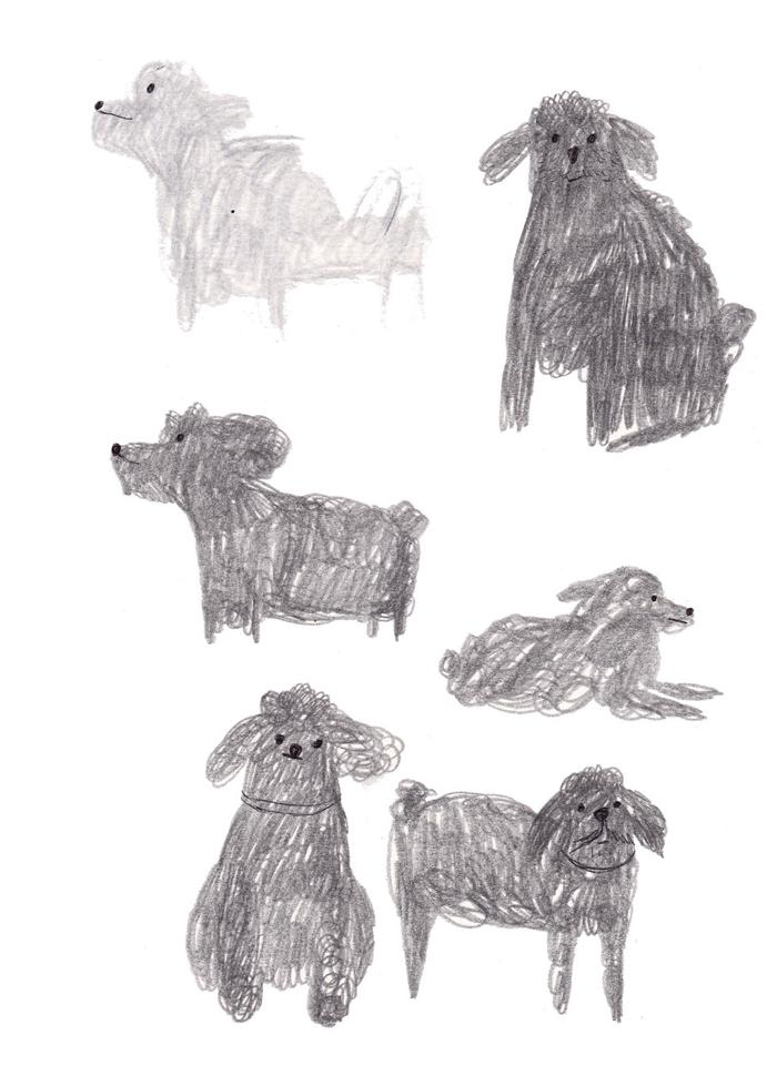 Recherches de chiens//