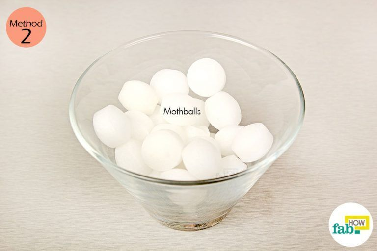 Things Need Moth Balls Getting Rid Of Mice Mice Repellent How To Deter Mice