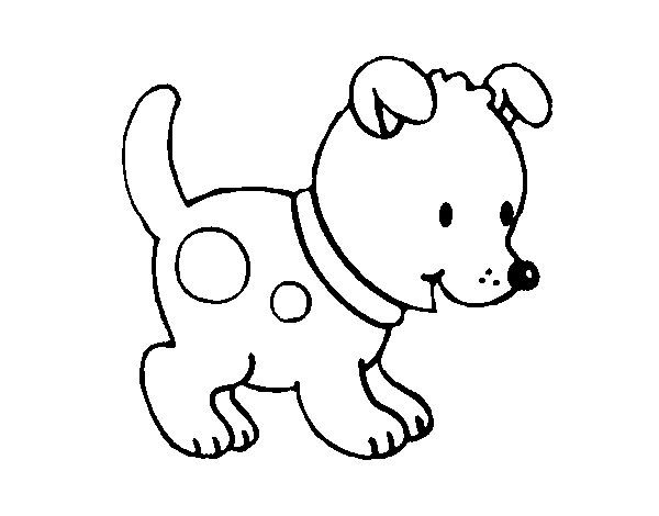 Resultado De Imagem Para Cão Para Colorir