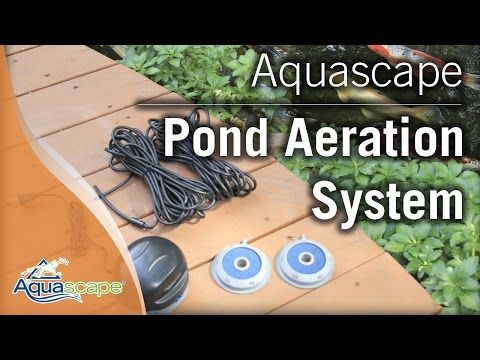 New Model Aquascape Pond Air 2 Includes 2 Stones Tubing And Air Pump With Dual Outlets 75000 Pond Aerator Aquascape Pond