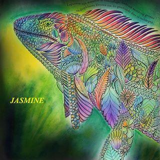 Coloring Books And More Jasmine Omgjasmineomg Instagram Profile
