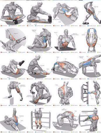 proform ab trax ab workout machine lot ab workout