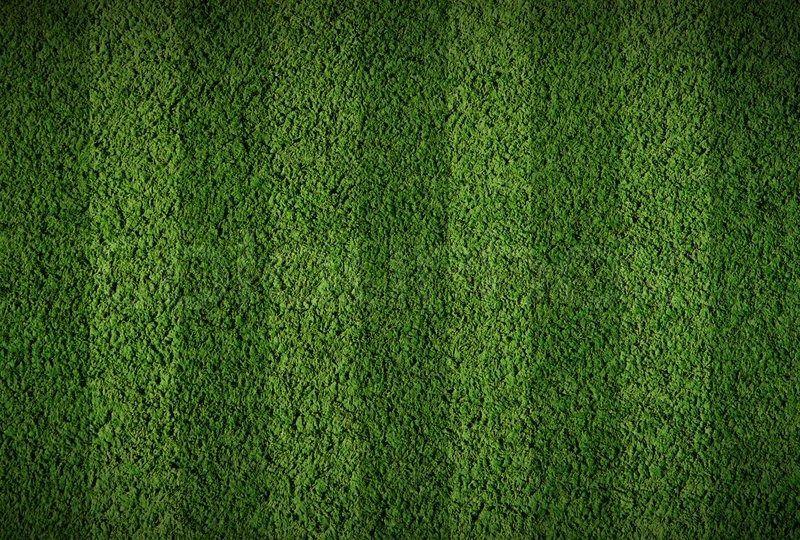 football field grass texture