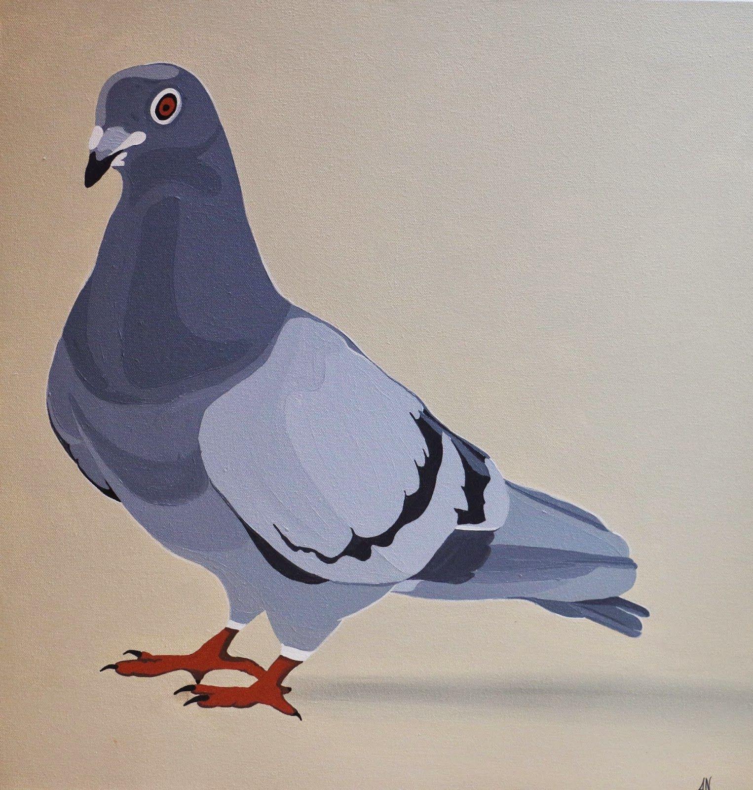 46+ Pigeons art ideas