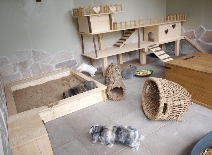 Gehegebilder Tierheim und Tierschutzzentrum des
