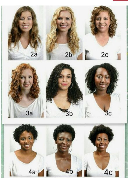 2a To 4c Curly Hair Styles Naturally Hair Type Chart Types Of