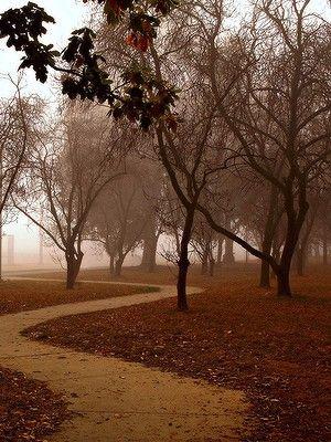 Canberra - Australia - Autumn