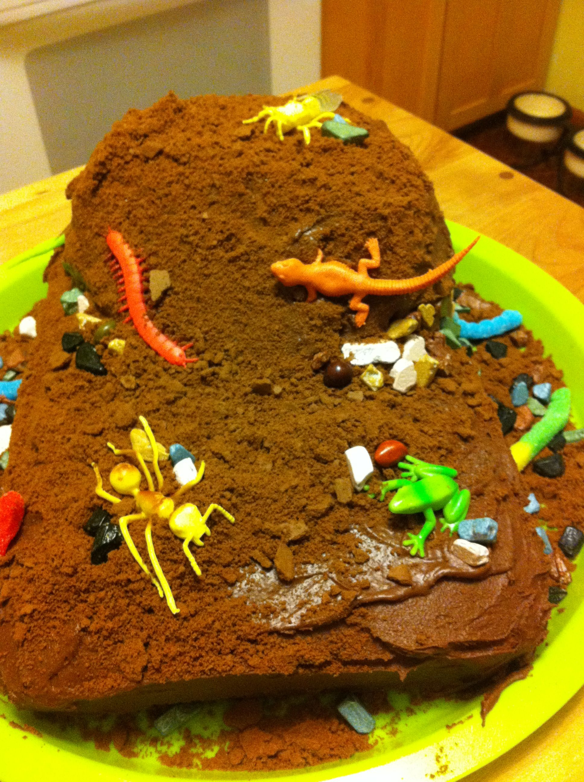 The Dirt Birthday Cake With Gummy Worms Choco Rocks And Plastic
