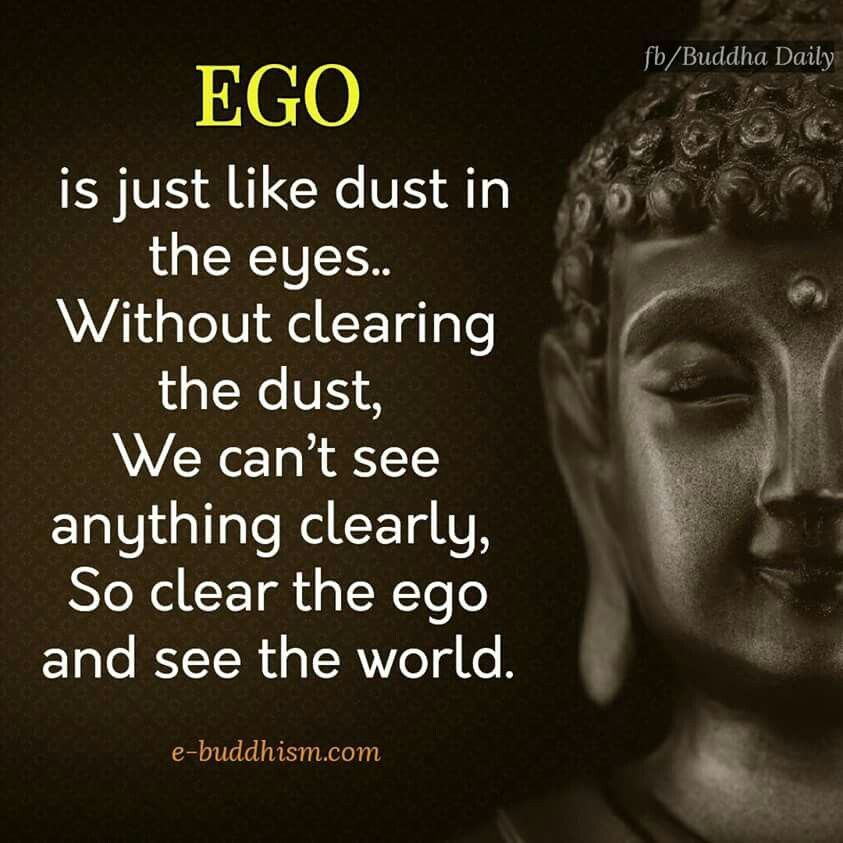 Pin By Viji Chidam On Buddha Quotes