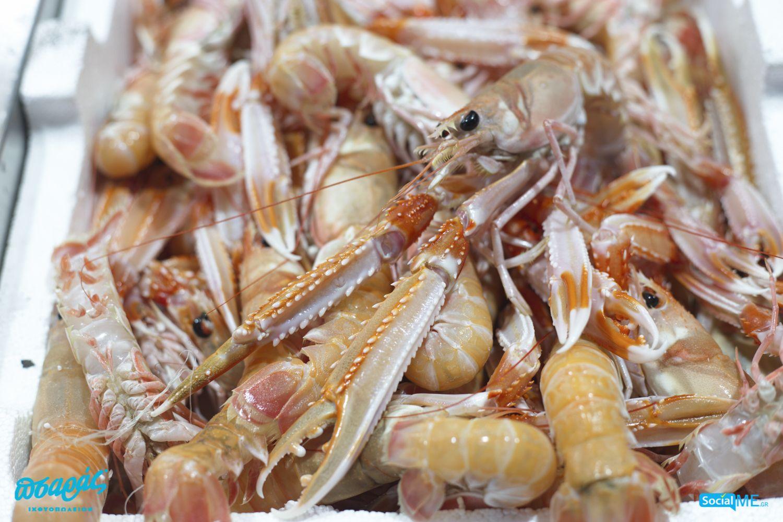 Η καραβίδα, χαρακτηρίζεται, από πολλούς, ως η βασίλισσα των θαλασσινών! Πάντως, οι καραβίδες του Πσαρά, είναι σωστές κυρίες – πανέμορφες, και, φυσικά, πεντανόστιμες! Αφήστε μας, να τις μαγειρέψουμε, στην κουζίνα μας, ή δοκιμάστε τις δικές σας μαγειρικές ικανότητες, δίνοντας τη δική σας παραγγελία στον Πσαρά, και με Delivery στο ☎️ 2310232228!