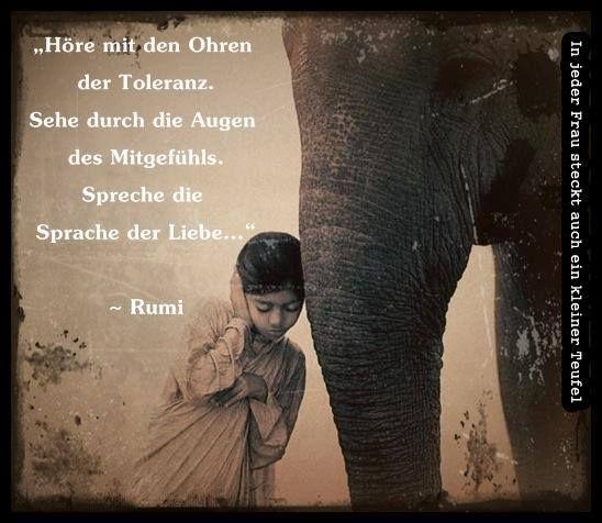Rumis Poetry In German Rumi Zitate Weisheiten Zitate Und