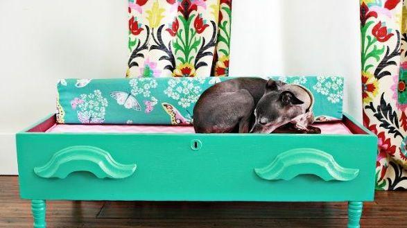 SONHOS ENGAVETADOS | para criar esta peça, basta ter: 1 gaveta + 4 pezinhos + 1 almofada + tinta para madeira + vontade de criar você mesmo uma nova cama para seu pet. <3 #petbed #diy #petdecor #Tecnisa Foto: DiyShowOff