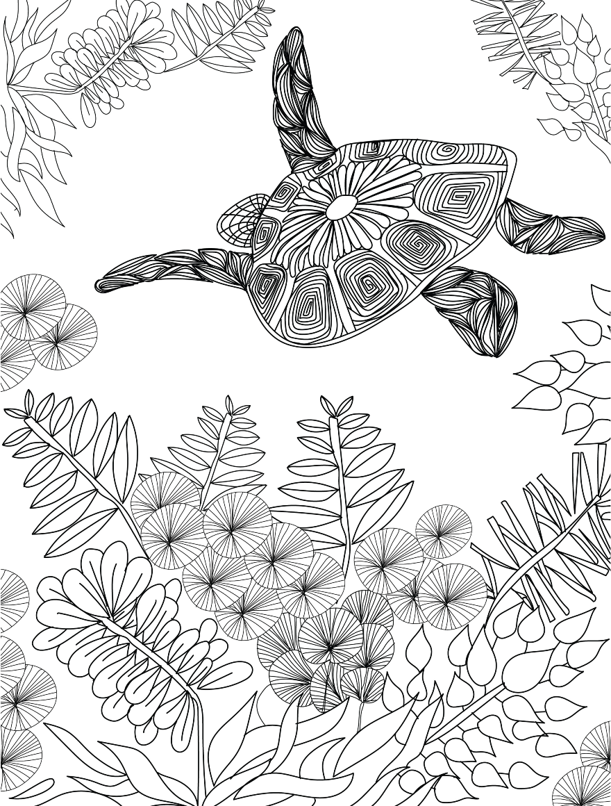 Adult Sea Turtle Coloring Pages Sketch Coloring Page