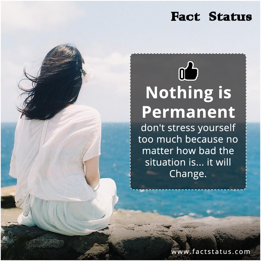 Pin By Fact Status On Whatsapp Status Motivational Quotes