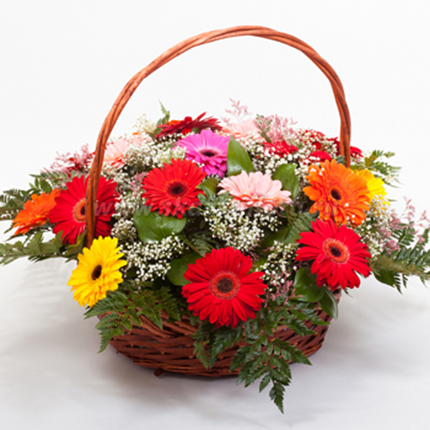 Flowersngifts24x7 Flower Delivery Best Online Flower Delivery Online Flower Delivery
