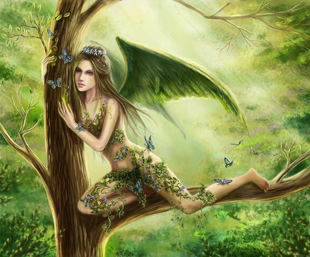 Феи на дереве картинки