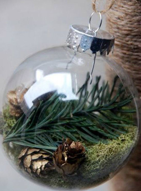 Christmas Terranium / 4 Christmas Trends 2015-Encased Nature-Eclectic Trends