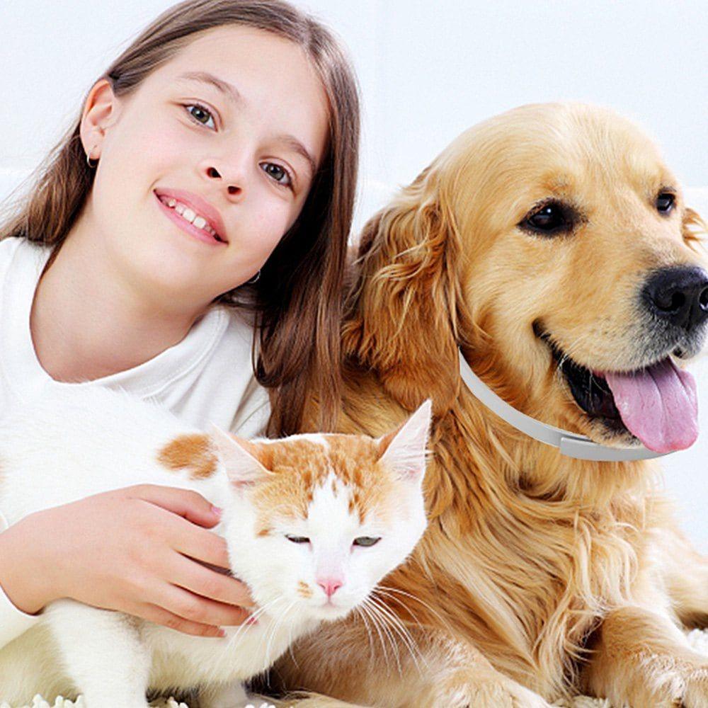 Pet Dog Flea Repellent Collar Cat Health Supplies Safe