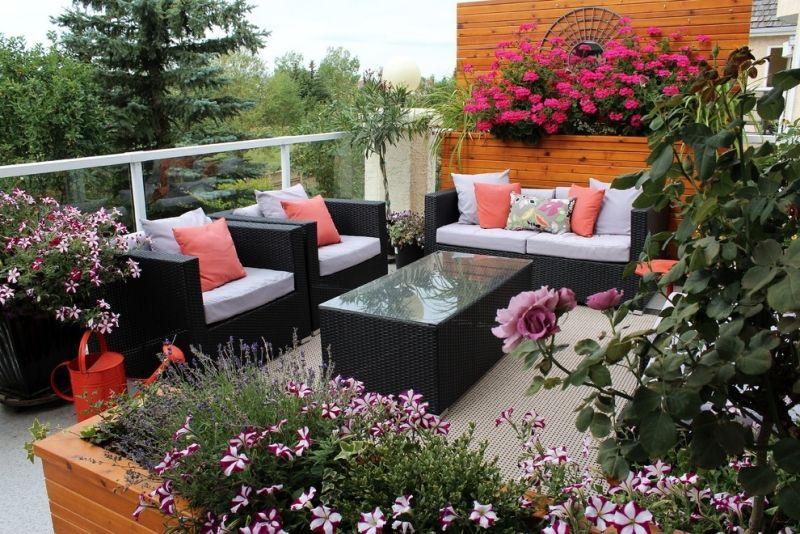 sonniger balkon mit sommerblumen bepflanzt roof terrace pinterest sommerblumen balkon und. Black Bedroom Furniture Sets. Home Design Ideas