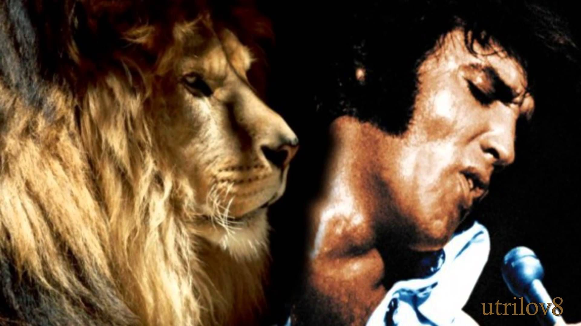 Elvis Presley Animal Instinct (Alternate Master) With