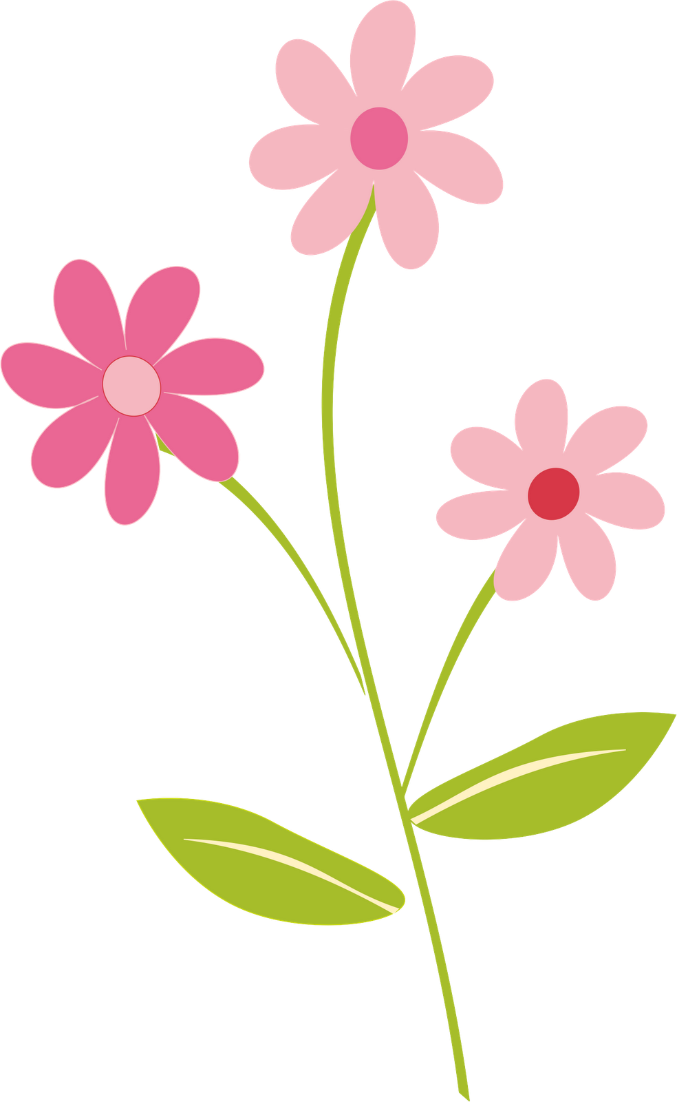 Cute spring flower - Photos For Flowers Border Clipart Png On Explore Our Collection Of Flowers Border Clipart Png By You Know And Love